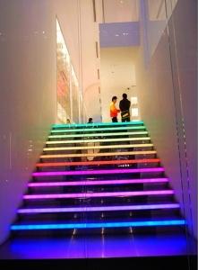 iluminarea scarii de gheata